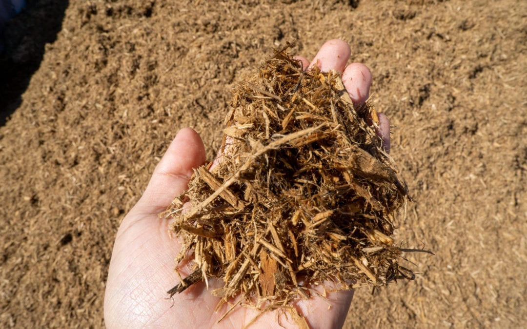 What is Mulch and What Does It Do?