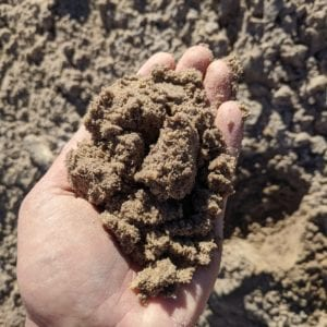 fill dirt in hand for scale and detail